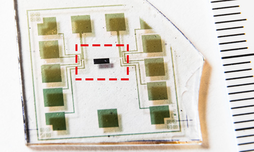 Complementary logic circuit created by researchers at the Laboratory of Organic Electronics