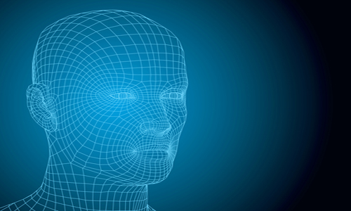 Wireframe human head, illustrated