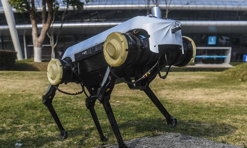 Jueying robot dog