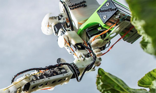 Harvesting robot developed by the Automated Brassica harvesting in Cornwall (ABC) project