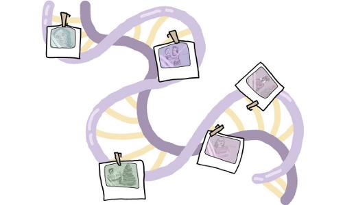 personal data, illustration