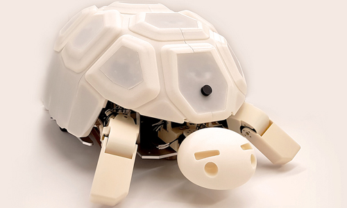 Robot tortoise named Shelly, developed by Naver Labs