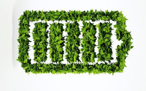Plants shaped like a battery