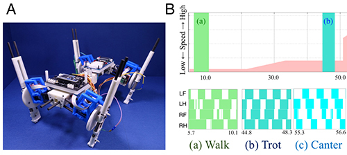 Image of quadruped robot and a graph