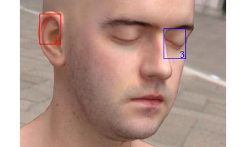 head rendering