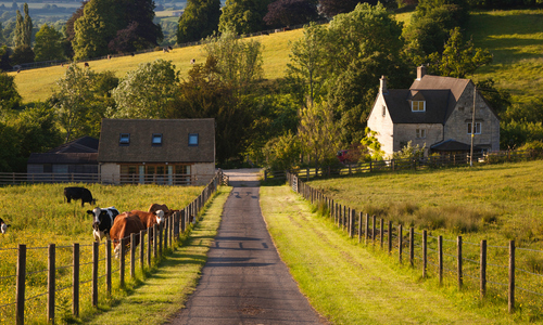 A rural road with two homes
