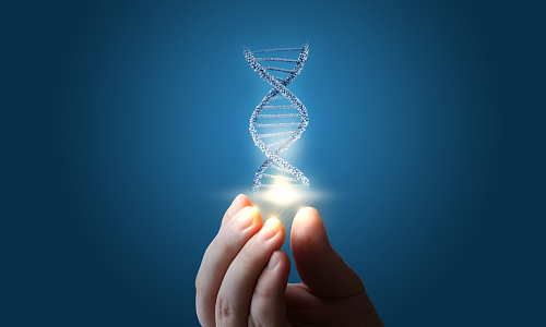 "Hand ""holding"" a strand of DNA"