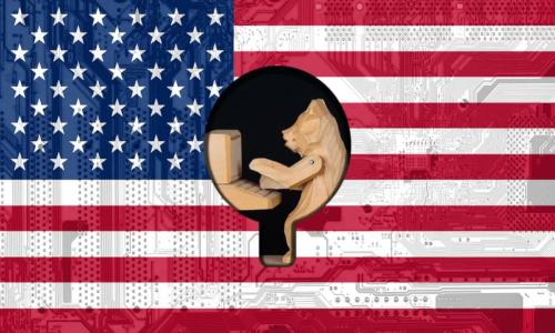 bear at computer, U.S. flag