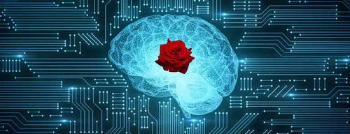 Image of an electronic brian with a rose.