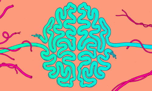 brain circuitry, illustration