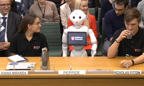 Pepper the robot at committee hearing in London