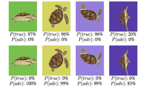 A grid showing a turtle in different positions and angles
