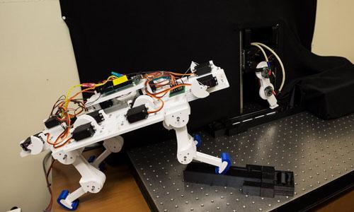 A robot imitating animals