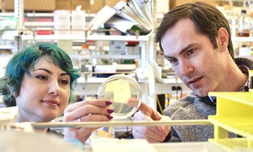 Vaccine researchers in a lab