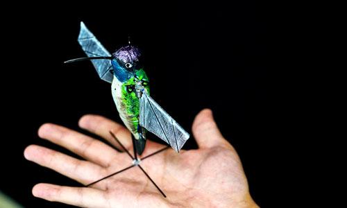 A hummingbird robot
