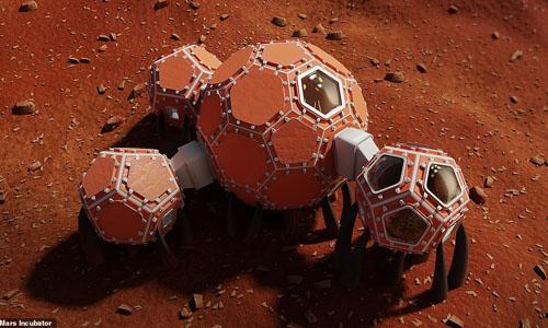 A Mars incubator design