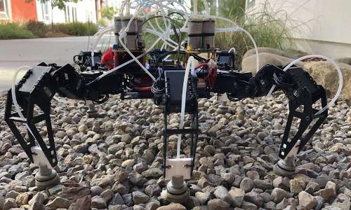 An off-the-shelf six-legged robot.