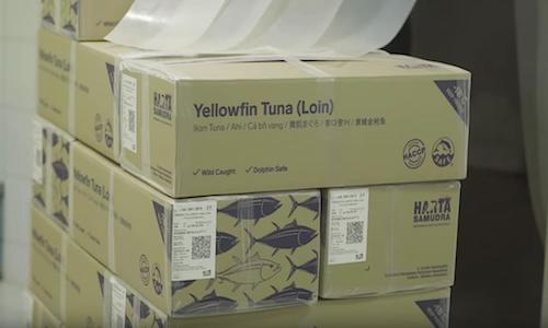 Boxes of tuna with QR-coded labels.