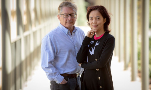 The co-directors of the Stanford Institute for Human-Centered Artificial Intelligence.